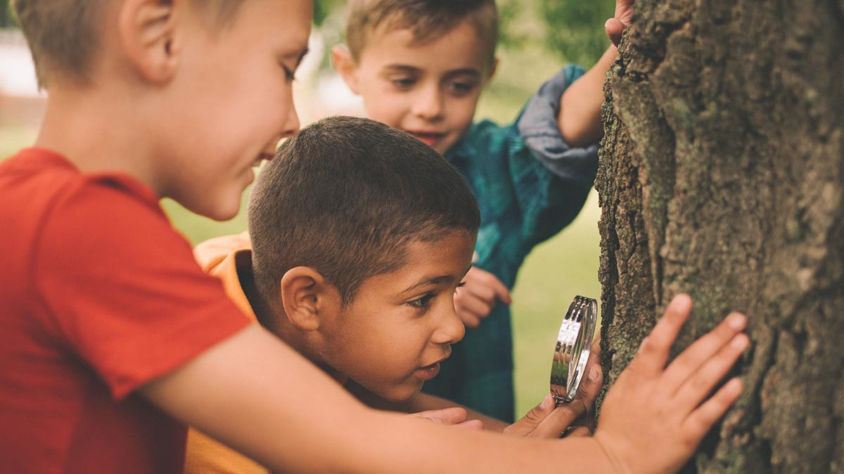The benefits of PLAY based Learning