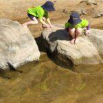 lagoon learning